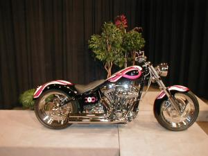 Susan Coleman Breast Cancer Awareness Build